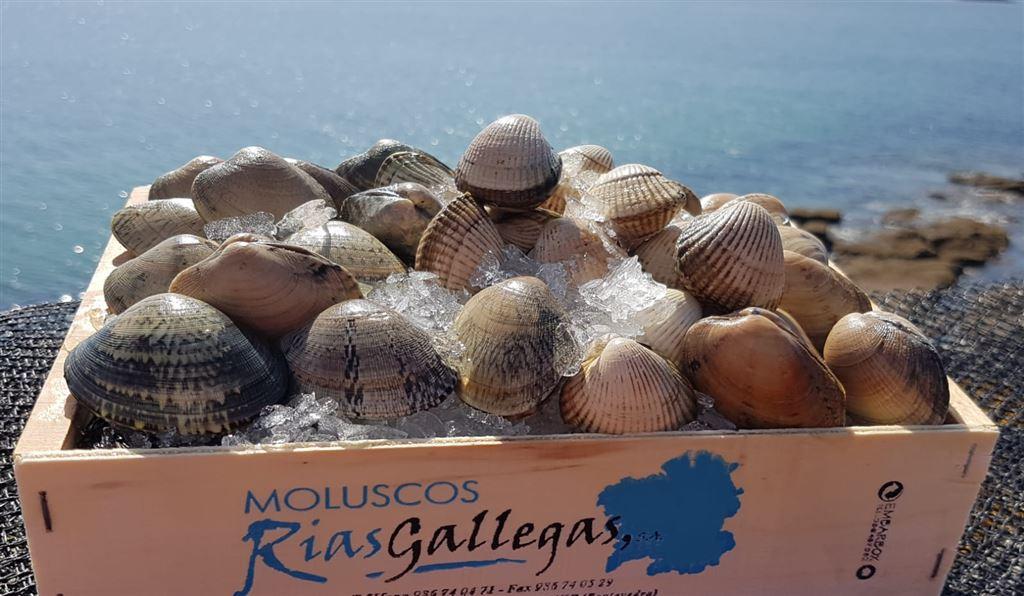 Moluscos Rías Gallegas, S.A.
