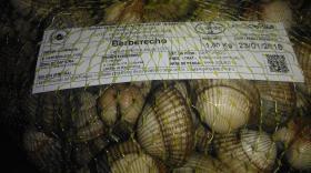 La depuradora de la Agrupación de Mariscadoras Río Anllóns renueva su certificación