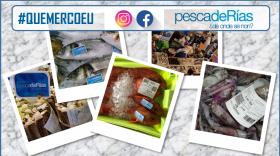 Inicio de campaña promocional en comercio minorista adherido. Mes de Xullo: Noia, Serra de Outes, A Estrada, A Guarda e Tomiño.