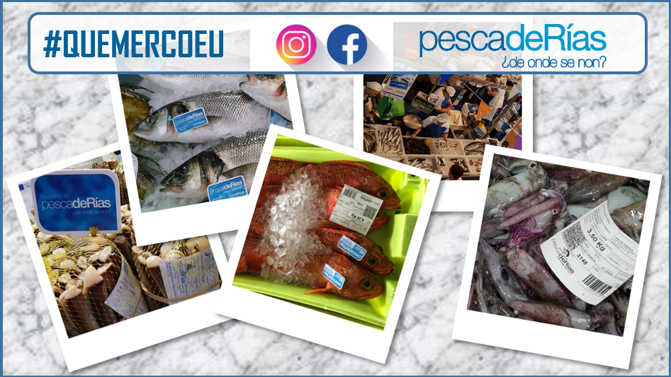 Campaña promocional en comercio minorista adherido. Mes de setembro: Pontevedra, Bueu, Santiago, Pontecesures e a Comarca do Barbanza.