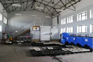 Nuevo agente certificado: Lonja y depuradora de la Cofradía de Pescadores de Ferrol