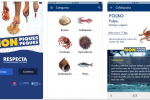 """A App """"Non piques, non peques"""" incorpora 30 novas especies"""