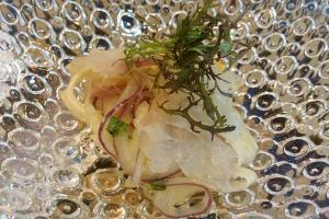 Prago marinado con ensalada de fiúncho